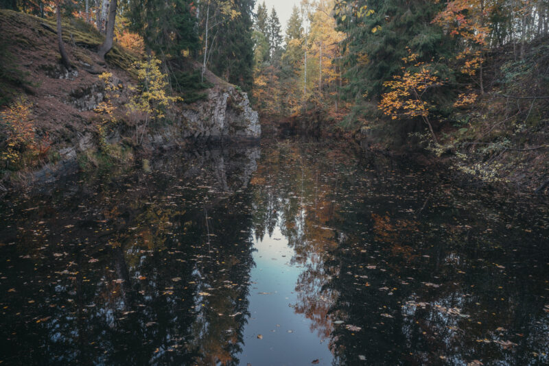 Small woodland lake surrounded trees that reflect in the water