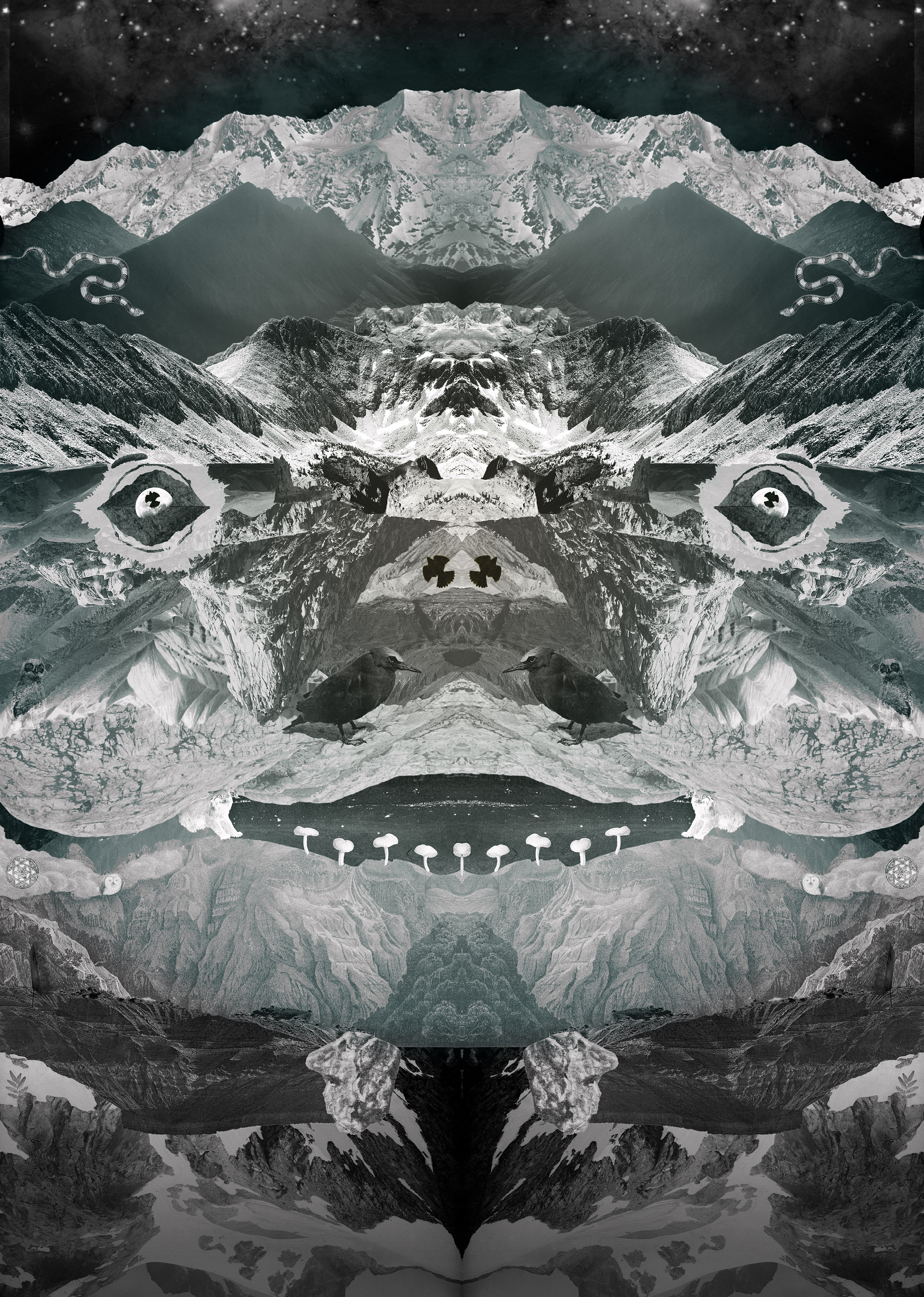 Collage consisting of vintage photography which form a face of a being
