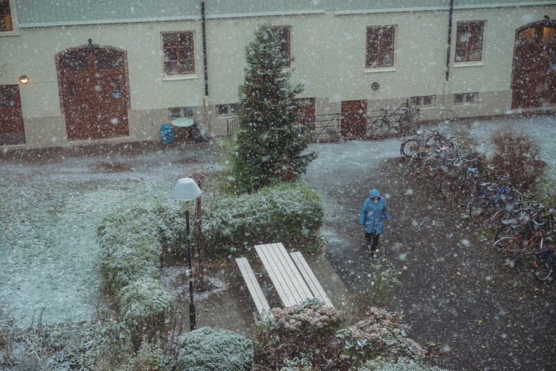 Person walking over a backyard as the snow is falling all around