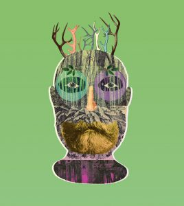 Collage of a man with beard and antlers